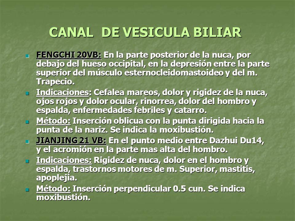 CANAL DE VESICULA BILIAR DAIMAI 26VB: Directamente debajo de la undecima costilla a nivel del ombligo DAIMAI 26VB: Directamente debajo de la undecima costilla a nivel del ombligo Indicaciones: Menstruación irregular, leucorrea, hernia, dolor en hipocondrio y lumbago Indicaciones: Menstruación irregular, leucorrea, hernia, dolor en hipocondrio y lumbago Método: Inserción perpendicular 0.3 a 0.5 cun la moxibustión es adecuada.