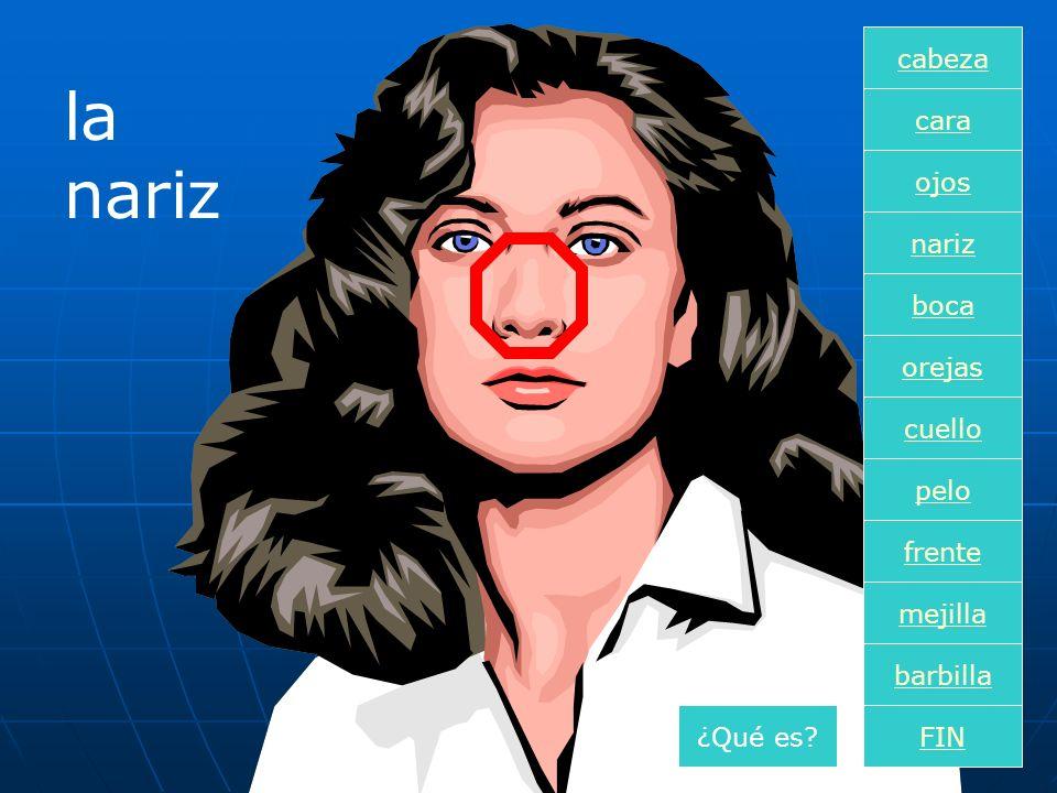 la nariz cara boca nariz orejas cuello pelo frente mejilla ojos FIN barbilla cabeza ¿Qué es?