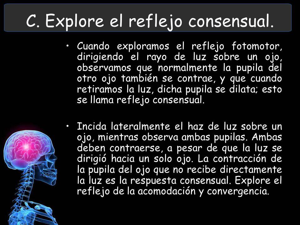 C. Explore el reflejo consensual. Cuando exploramos el reflejo fotomotor, dirigiendo el rayo de luz sobre un ojo, observamos que normalmente la pupila