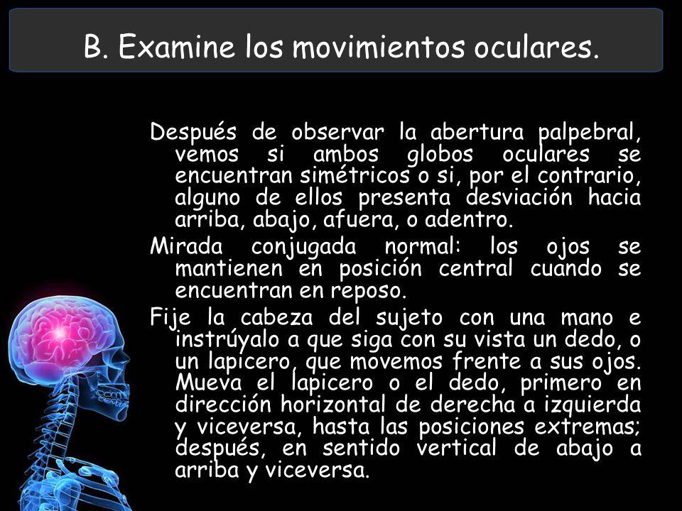 B. Examine los movimientos oculares. Después de observar la abertura palpebral, vemos si ambos globos oculares se encuentran simétricos o si, por el c