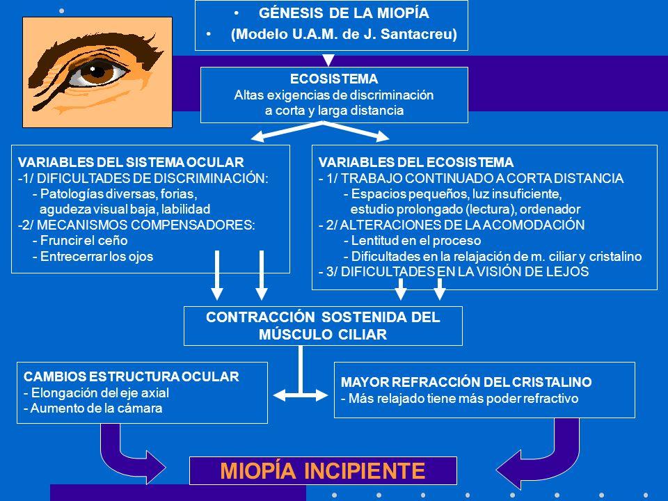 ¿QUÉ ES LA MIOPÍA? - Un ojo es miope cuando su longitud y/o su poder de refracción es superior a lo normal. - Los rayos de luz paralelos que inciden e