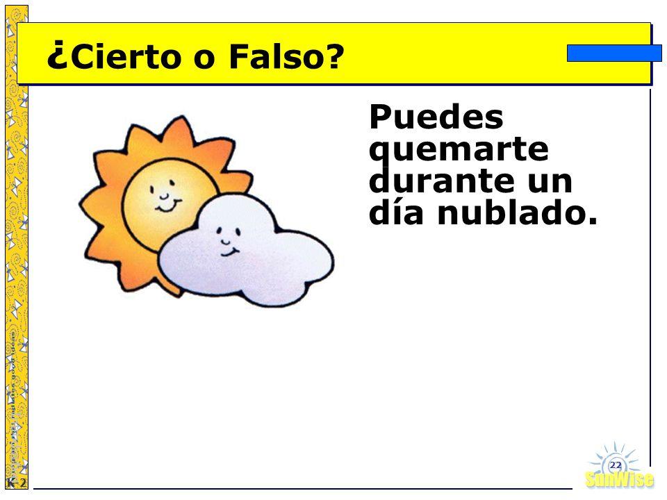 SunWiseSunWise JA K-2 22 ¿ Cierto o Falso? Puedes quemarte durante un día nublado. Introduction