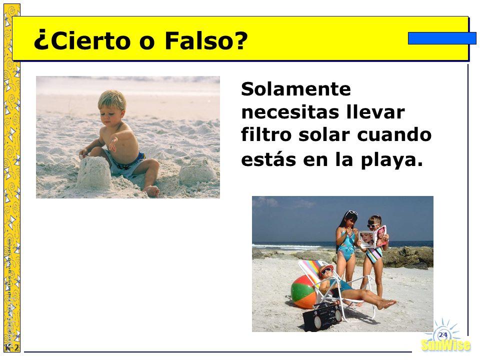 SunWiseSunWise JA K-2 24 ¿ Cierto o Falso? Solamente necesitas llevar filtro solar cuando estás en la playa. Introduction