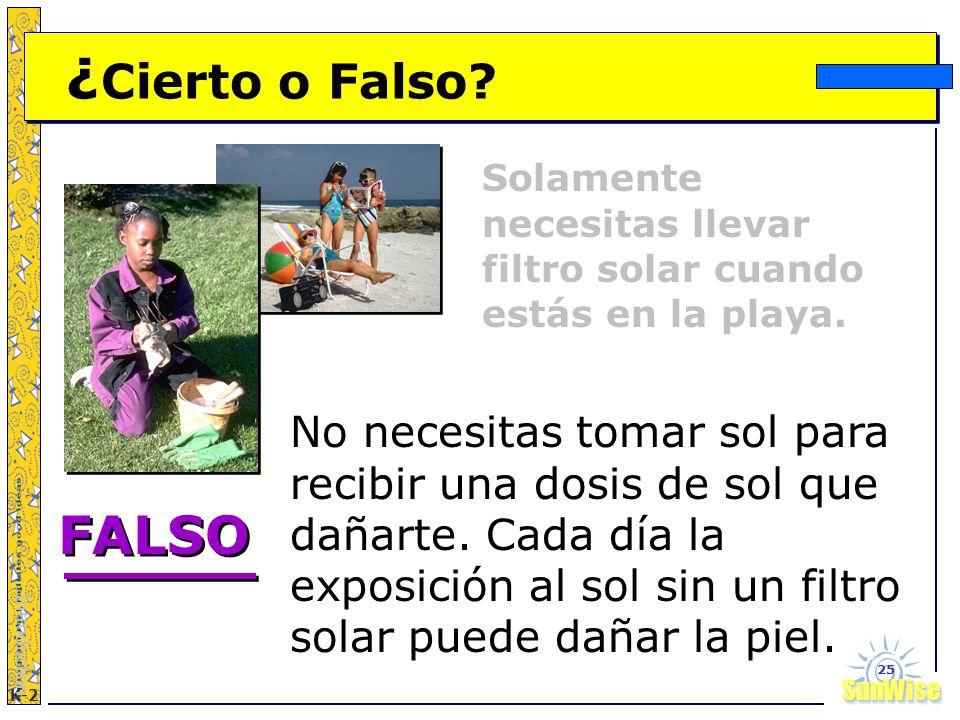SunWiseSunWise JA K-2 25 ¿ Cierto o Falso? Solamente necesitas llevar filtro solar cuando estás en la playa. Introduction No necesitas tomar sol para