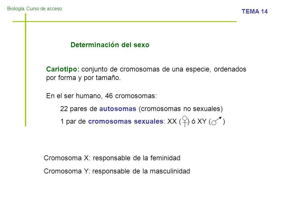 Biología. Curso de acceso TEMA 14 Cariotipo de una mujer: 46, XX