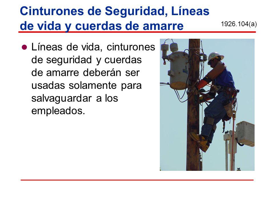 Cinturones de Seguridad, Líneas de vida y cuerdas de amarre Líneas de vida, cinturones de seguridad y cuerdas de amarre deberán ser usadas solamente p
