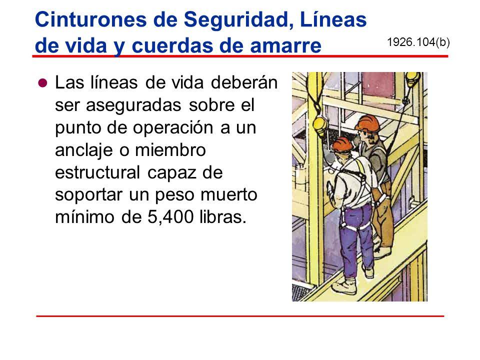 Cinturones de Seguridad, Líneas de vida y cuerdas de amarre Las líneas de vida deberán ser aseguradas sobre el punto de operación a un anclaje o miemb