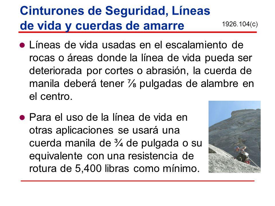 Cinturones de Seguridad, Líneas de vida y cuerdas de amarre Líneas de vida usadas en el escalamiento de rocas o áreas donde la línea de vida pueda ser