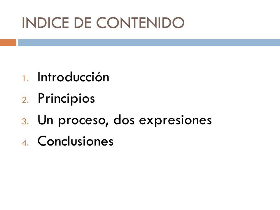 Introducción Reflexiones desde el Proyecto Bicentenarios Este proceso ha sido muy rico: Tiene proyección Hace memoria y también futuro.