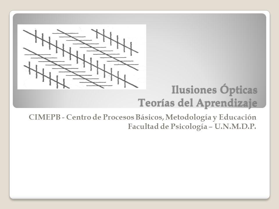 Ilusiones Ópticas Teorías del Aprendizaje CIMEPB - Centro de Procesos Básicos, Metodología y Educación Facultad de Psicología – U.N.M.D.P.