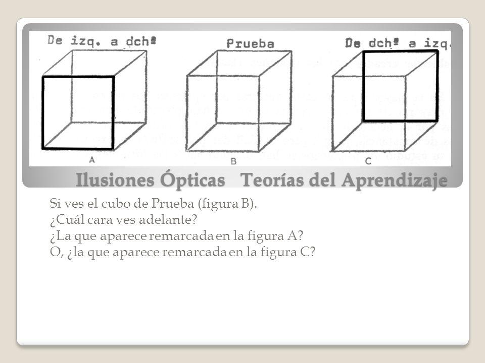 Ilusiones Ópticas Teorías del Aprendizaje Si ves el cubo de Prueba (figura B). ¿Cuál cara ves adelante? ¿La que aparece remarcada en la figura A? O, ¿