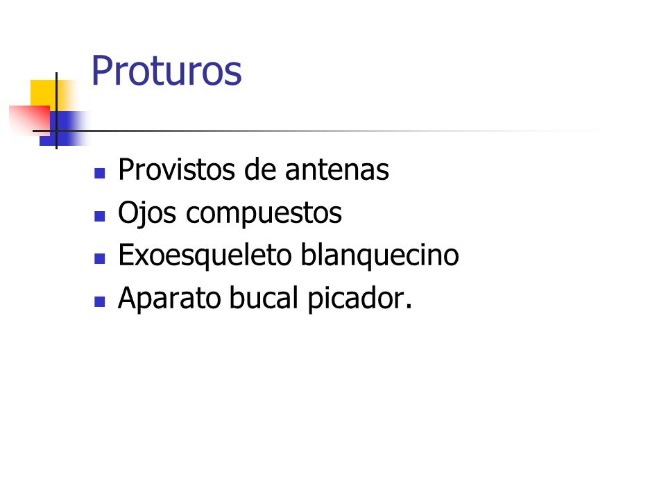 Proturos Provistos de antenas Ojos compuestos Exoesqueleto blanquecino Aparato bucal picador.