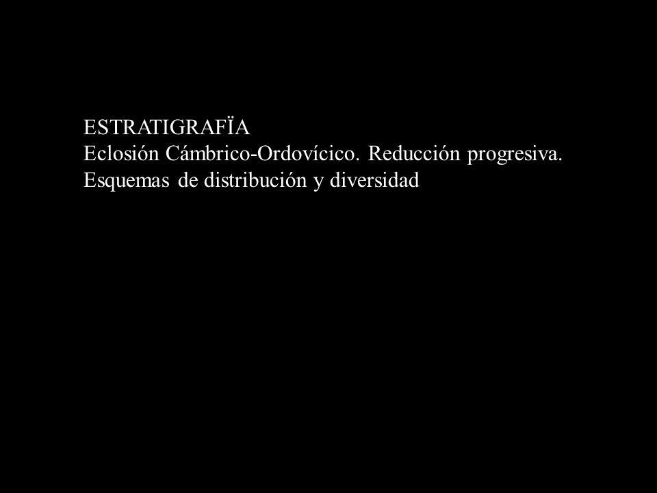ESTRATIGRAFÏA Eclosión Cámbrico-Ordovícico. Reducción progresiva. Esquemas de distribución y diversidad