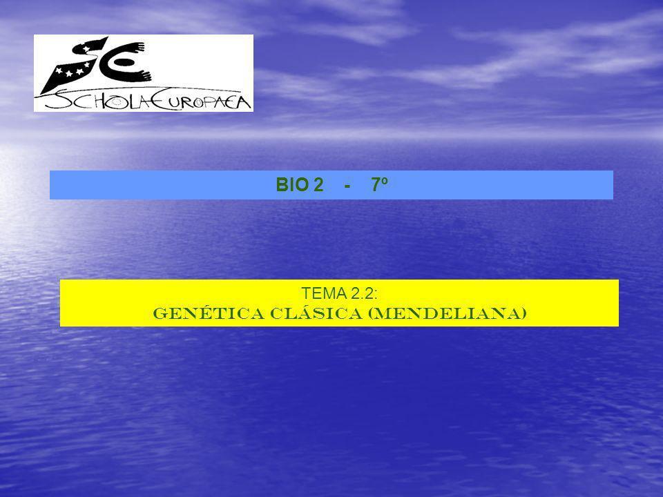 BIO 2 - 7º TEMA 2.2: GENÉTICA CLÁSICA (MENDELIANA)