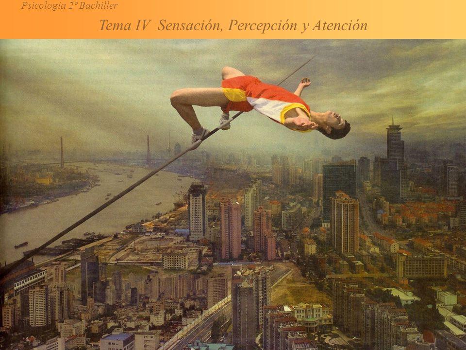 Psicología 2º Bachiller Tema IV Sensación, Percepción y Atención