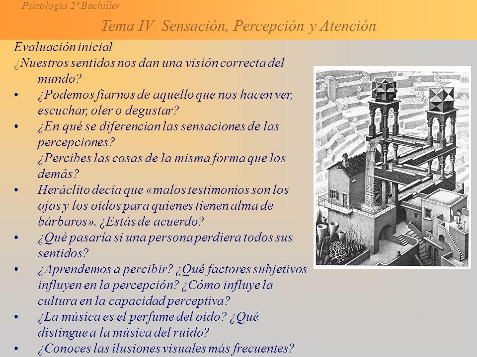 Psicología 2º Bachiller Tema IV Sensación, Percepción y Atención Evaluación inicial ¿Nuestros sentidos nos dan una visión correcta del mundo.