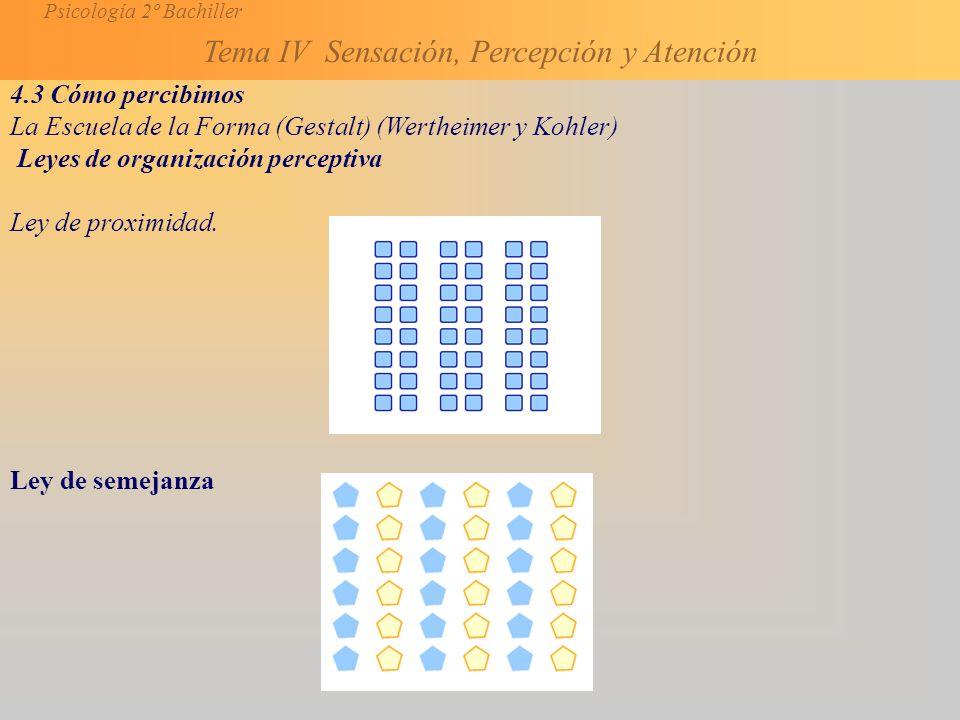 Psicología 2º Bachiller Tema IV Sensación, Percepción y Atención 4.3 Cómo percibimos La Escuela de la Forma (Gestalt) (Wertheimer y Kohler) Leyes de organización perceptiva Ley de proximidad.