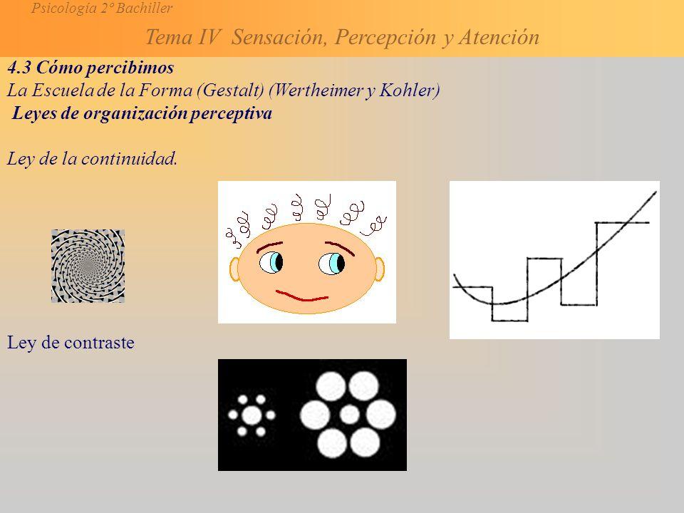 Psicología 2º Bachiller Tema IV Sensación, Percepción y Atención 4.3 Cómo percibimos La Escuela de la Forma (Gestalt) (Wertheimer y Kohler) Leyes de organización perceptiva Ley de la continuidad.
