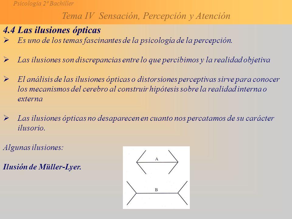 Psicología 2º Bachiller Tema IV Sensación, Percepción y Atención 4.4 Las ilusiones ópticas Es uno de los temas fascinantes de la psicología de la percepción.