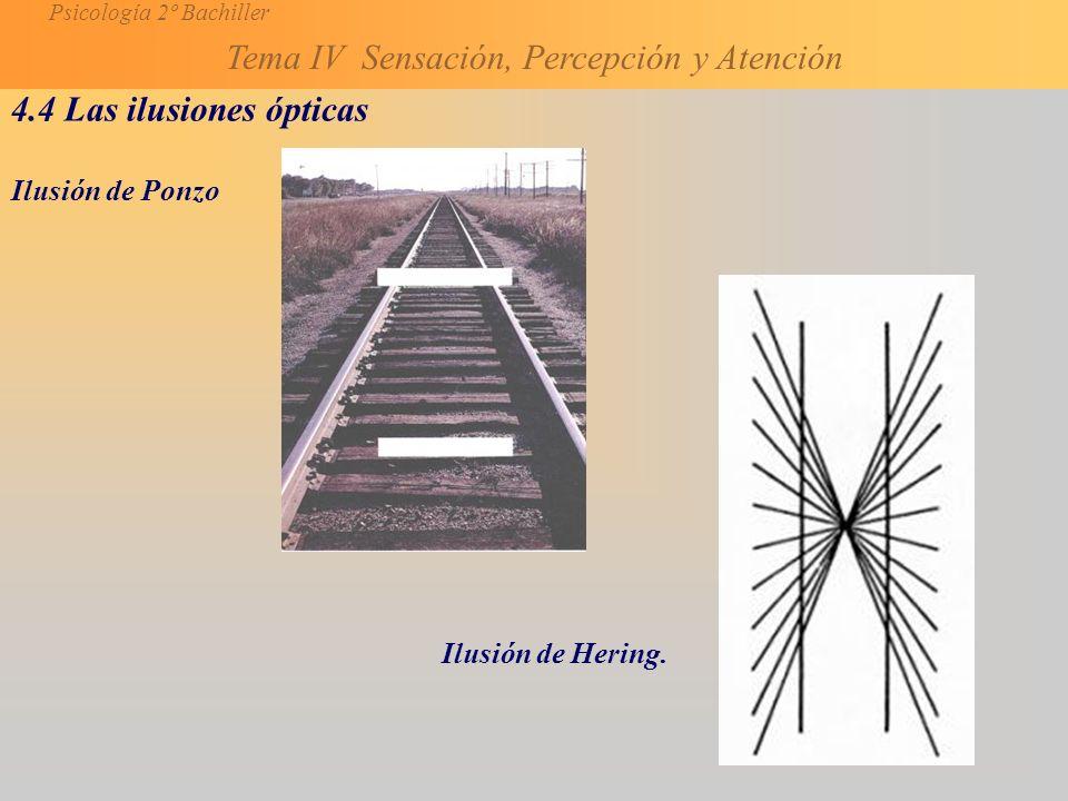 Psicología 2º Bachiller Tema IV Sensación, Percepción y Atención 4.4 Las ilusiones ópticas Ilusión de Ponzo Ilusión de Hering.