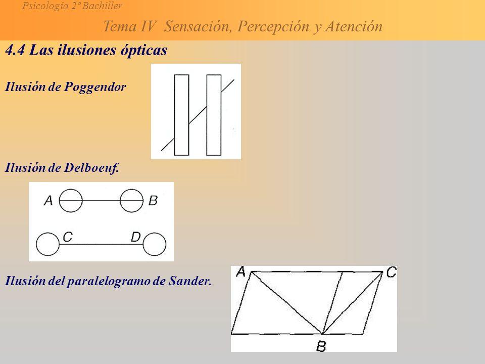Psicología 2º Bachiller Tema IV Sensación, Percepción y Atención 4.4 Las ilusiones ópticas Ilusión de Poggendor Ilusión de Delboeuf.