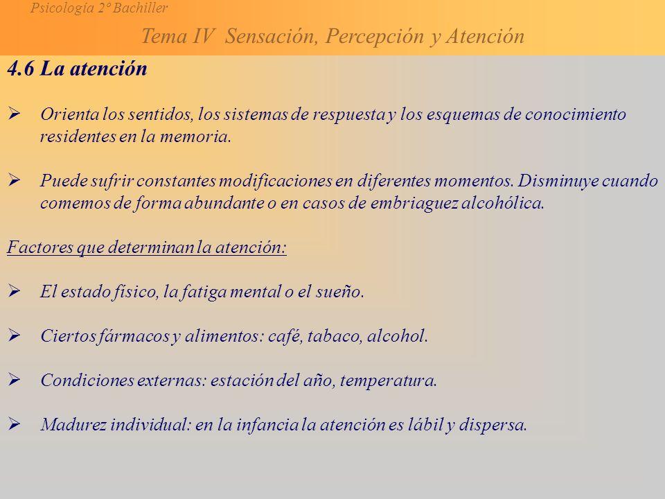 Psicología 2º Bachiller Tema IV Sensación, Percepción y Atención 4.6 La atención Orienta los sentidos, los sistemas de respuesta y los esquemas de conocimiento residentes en la memoria.