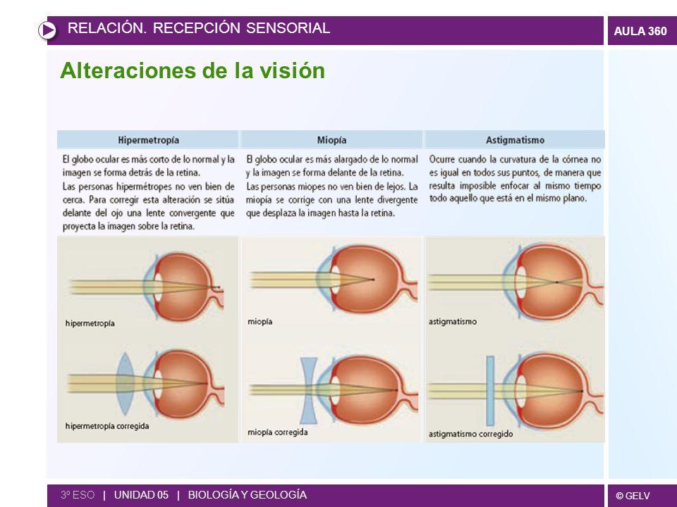 © GELV AULA 360 RELACIÓN. RECEPCIÓN SENSORIAL 3º ESO | UNIDAD 05 | BIOLOGÍA Y GEOLOGÍA Alteraciones de la visión
