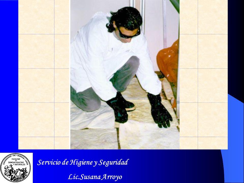 N Peligroso para el Medio Ambiente Servicio de Higiene y Seguridad Lic.Susana Arroyo