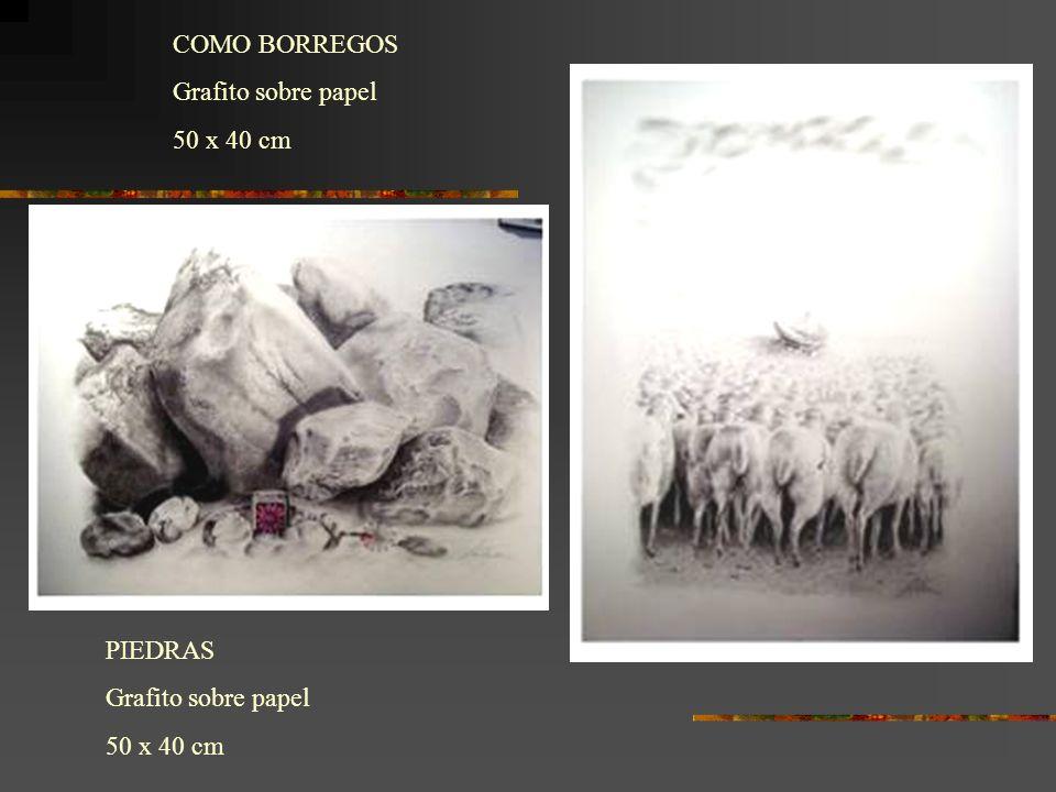 PIEDRAS Grafito sobre papel 50 x 40 cm COMO BORREGOS Grafito sobre papel 50 x 40 cm