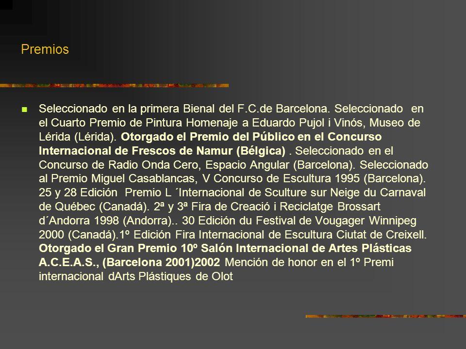 Premios Seleccionado en la primera Bienal del F.C.de Barcelona. Seleccionado en el Cuarto Premio de Pintura Homenaje a Eduardo Pujol i Vinós, Museo de