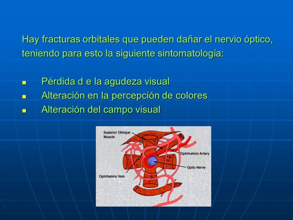 Hay fracturas orbitales que pueden dañar el nervio óptico, teniendo para esto la siguiente sintomatología: Pérdida d e la agudeza visual Pérdida d e la agudeza visual Alteración en la percepción de colores Alteración en la percepción de colores Alteración del campo visual Alteración del campo visual