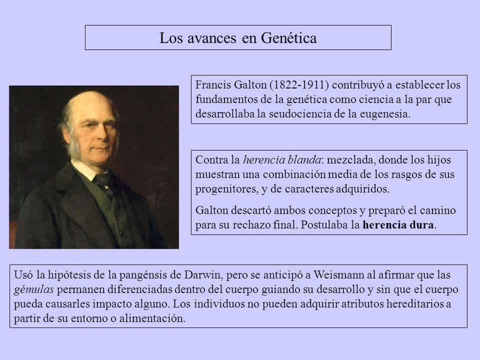 Los avances en Genética Francis Galton (1822-1911) contribuyó a establecer los fundamentos de la genética como ciencia a la par que desarrollaba la se