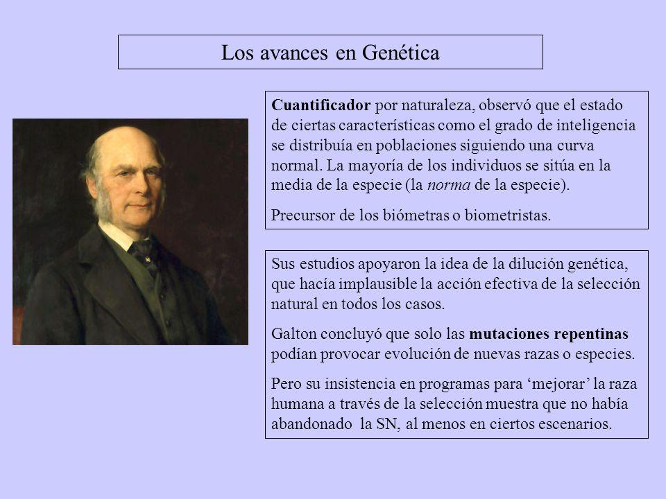 Los avances en Genética August Weismann (1834-1914) fue influido por Galton, y también asumió la causa de la herencia dura.