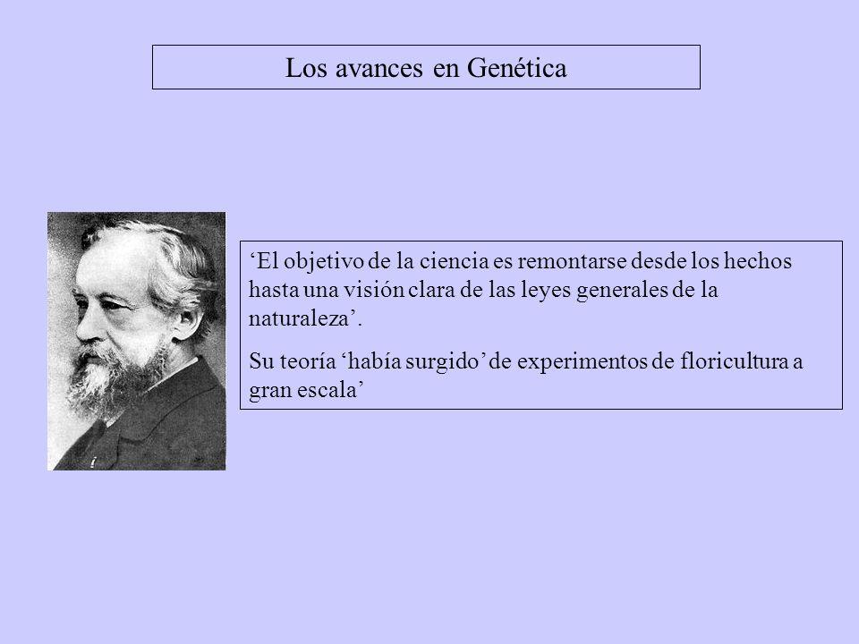 Los avances en Genética Gregor Mendel (1822-1884).