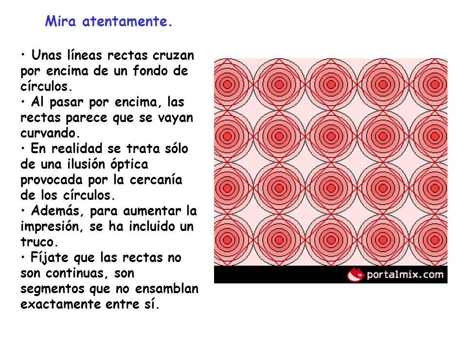 Mira atentamente. Unas líneas rectas cruzan por encima de un fondo de círculos. Al pasar por encima, las rectas parece que se vayan curvando. En reali