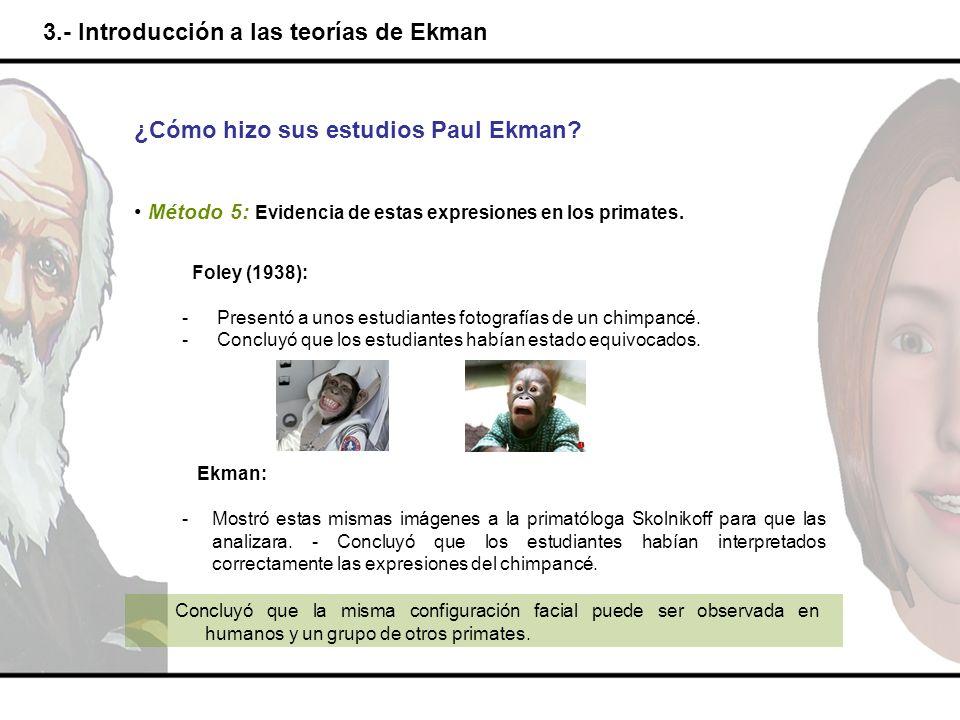 3.- Introducción a las teorías de Ekman ¿Cómo hizo sus estudios Paul Ekman? Método 5: Evidencia de estas expresiones en los primates. Foley (1938): -