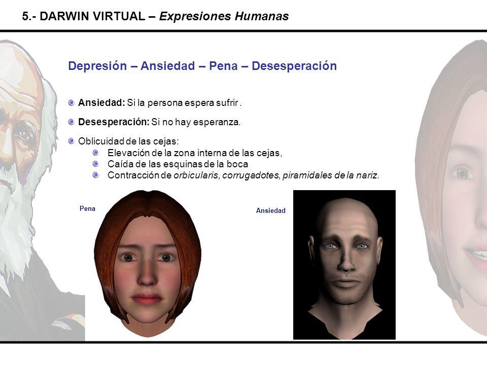 5.- DARWIN VIRTUAL – Expresiones Humanas Depresión – Ansiedad – Pena – Desesperación Ansiedad: Si la persona espera sufrir. Desesperación: Si no hay e
