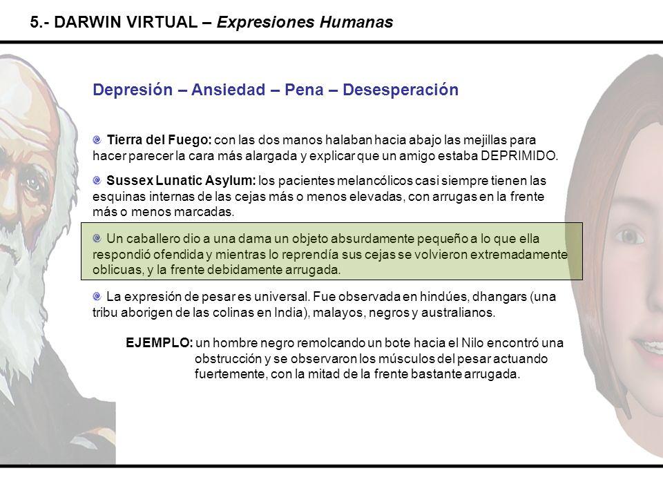 5.- DARWIN VIRTUAL – Expresiones Humanas Depresión – Ansiedad – Pena – Desesperación Tierra del Fuego: con las dos manos halaban hacia abajo las mejil