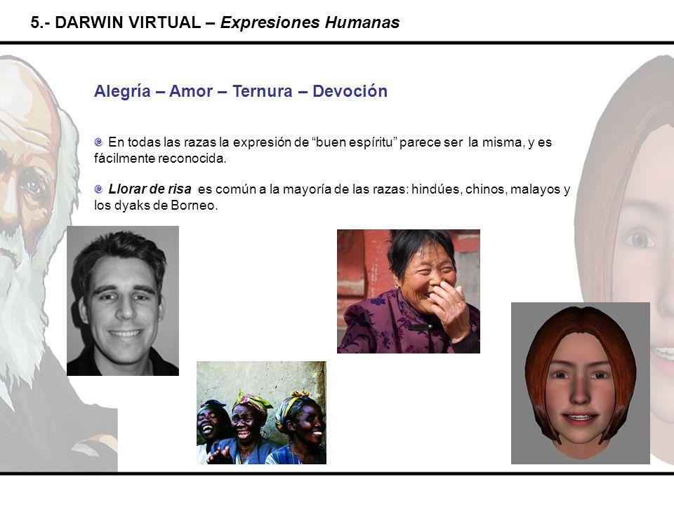 5.- DARWIN VIRTUAL – Expresiones Humanas Alegría – Amor – Ternura – Devoción En todas las razas la expresión de buen espíritu parece ser la misma, y e