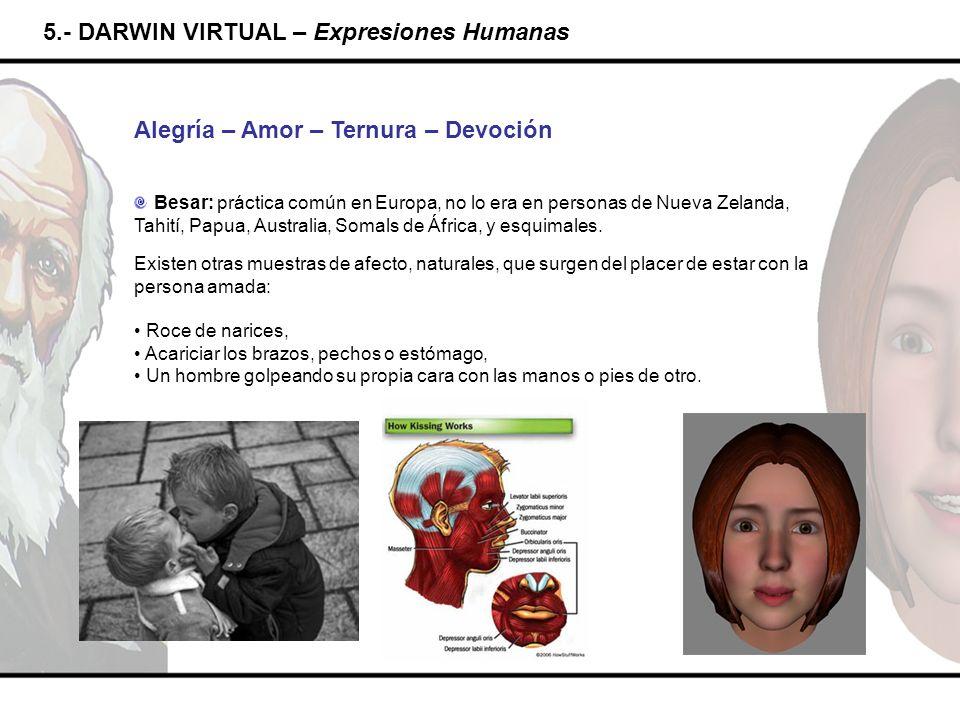 5.- DARWIN VIRTUAL – Expresiones Humanas Alegría – Amor – Ternura – Devoción Besar: práctica común en Europa, no lo era en personas de Nueva Zelanda,