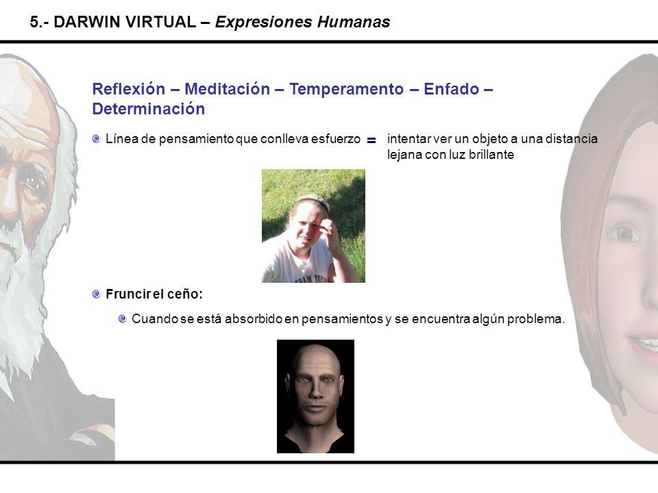 5.- DARWIN VIRTUAL – Expresiones Humanas Reflexión – Meditación – Temperamento – Enfado – Determinación intentar ver un objeto a una distancia lejana