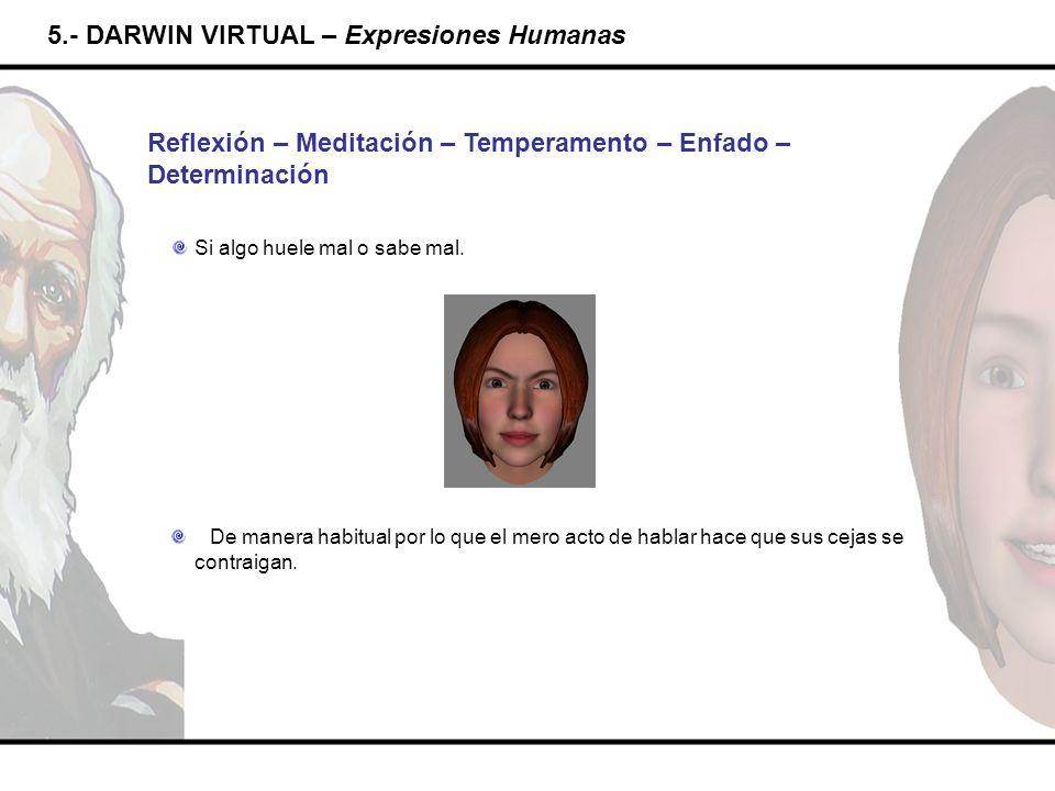 5.- DARWIN VIRTUAL – Expresiones Humanas Reflexión – Meditación – Temperamento – Enfado – Determinación De manera habitual por lo que el mero acto de