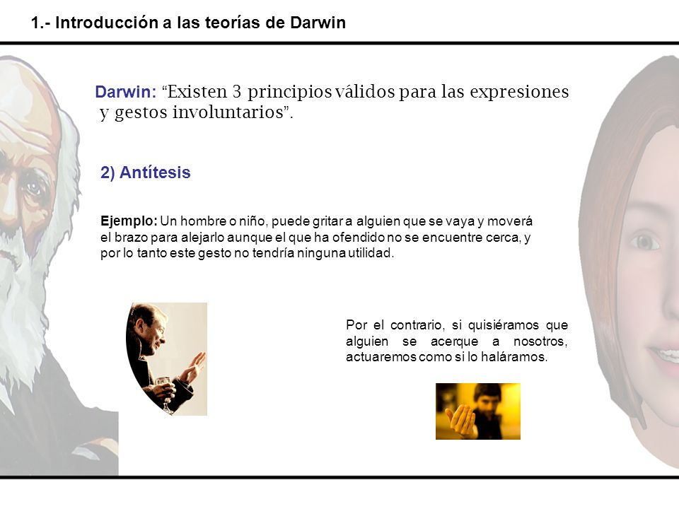 1.- Introducción a las teorías de Darwin Darwin: Existen 3 principios válidos para las expresiones y gestos involuntarios. 2) Antítesis Ejemplo: Un ho