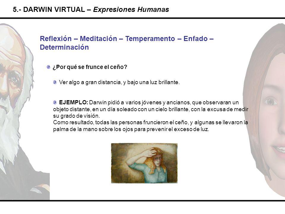 5.- DARWIN VIRTUAL – Expresiones Humanas Reflexión – Meditación – Temperamento – Enfado – Determinación ¿Por qué se frunce el ceño? Ver algo a gran di