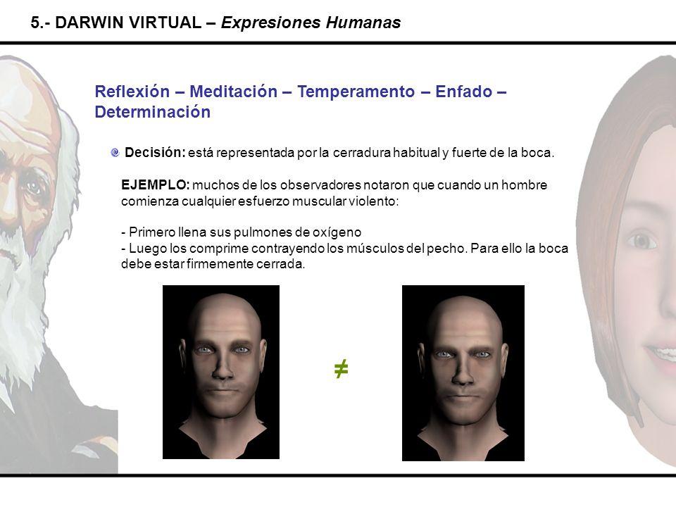 5.- DARWIN VIRTUAL – Expresiones Humanas Reflexión – Meditación – Temperamento – Enfado – Determinación Decisión: está representada por la cerradura h