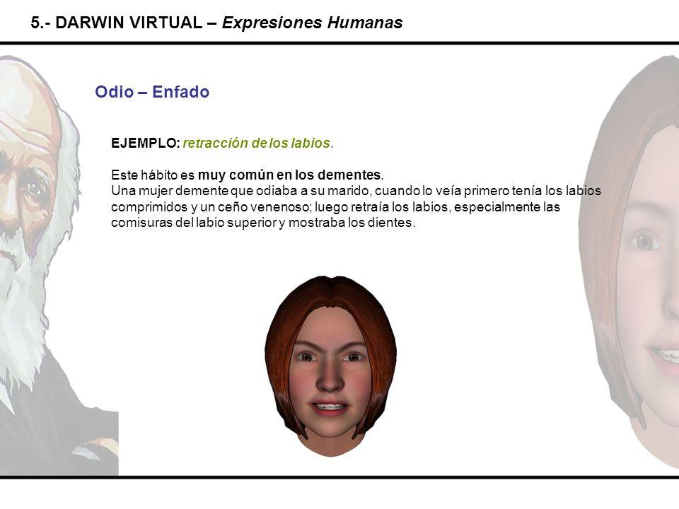 5.- DARWIN VIRTUAL – Expresiones Humanas Odio – Enfado EJEMPLO: retracción de los labios. Este hábito es muy común en los dementes. Una mujer demente