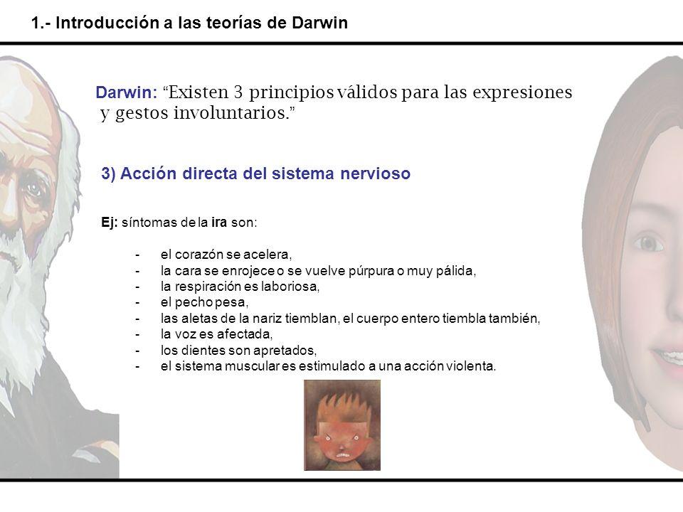 1.- Introducción a las teorías de Darwin Darwin: Existen 3 principios válidos para las expresiones y gestos involuntarios. 3) Acción directa del siste