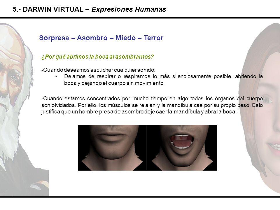 5.- DARWIN VIRTUAL – Expresiones Humanas Sorpresa – Asombro – Miedo – Terror ¿Por qué abrimos la boca al asombrarnos? -Cuando deseamos escuchar cualqu