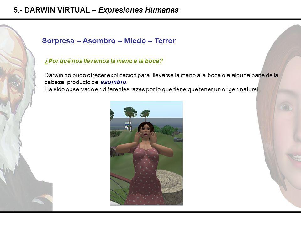 5.- DARWIN VIRTUAL – Expresiones Humanas Sorpresa – Asombro – Miedo – Terror ¿Por qué nos llevamos la mano a la boca? Darwin no pudo ofrecer explicaci