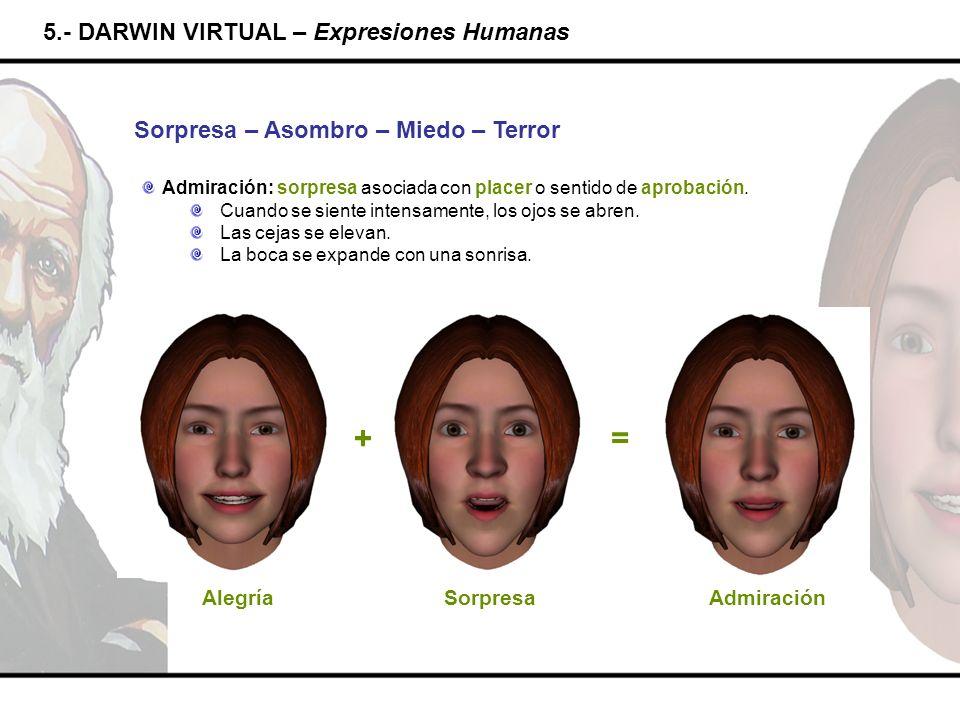 5.- DARWIN VIRTUAL – Expresiones Humanas Sorpresa – Asombro – Miedo – Terror Admiración: sorpresa asociada con placer o sentido de aprobación. Cuando